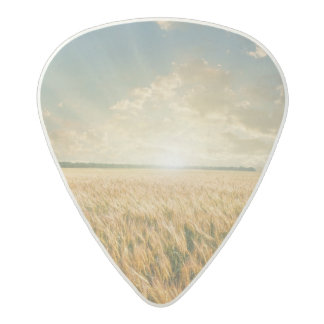 Wheat field on sunset acetal guitar pick