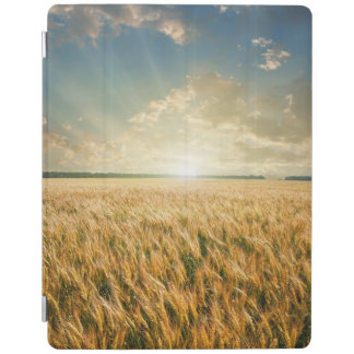 Wheat field on sunset iPad cover