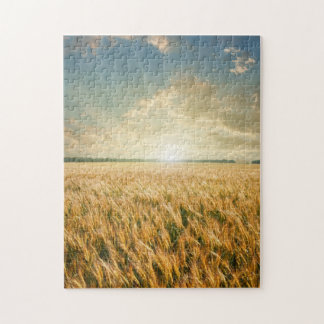 Wheat field on sunset jigsaw puzzle