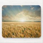 Wheat field on sunset mouse mat
