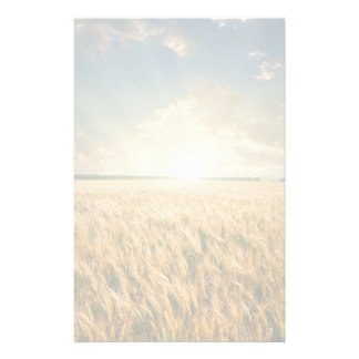 Wheat field on sunset stationery