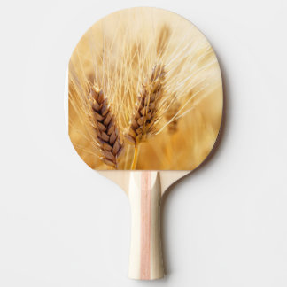 Wheat field ping pong paddle