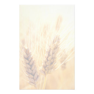 Wheat field custom stationery