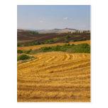 Wheat fields after harvest postcard