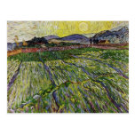 Wheat Fields by Van Gogh Post Card