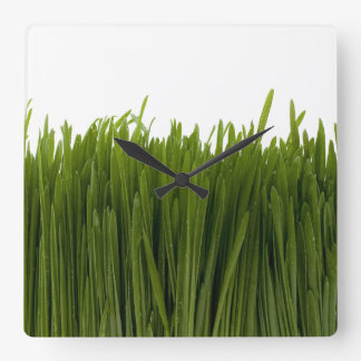 Wheat Grass Wall Clock
