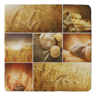 Wheat.Harvest concepts.Cereal collage Trivet