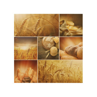 Wheat.Harvest concepts.Cereal collage Wood Wall Decor