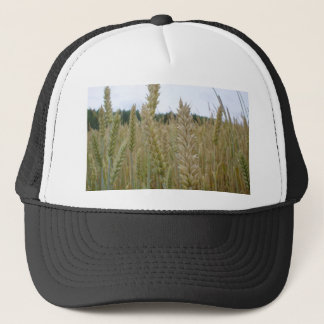 Wheat Plant Seeds Trucker Hat