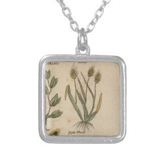 Wheat Plant Silver Plated Necklace