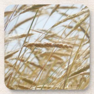 Wheat & Sky Coaster Set