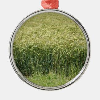 Wheat - Tasty! Christmas Ornament