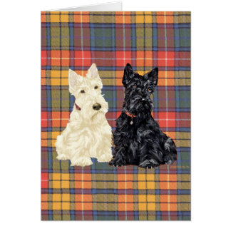 Wheaten and Black Scottish Terriers Card