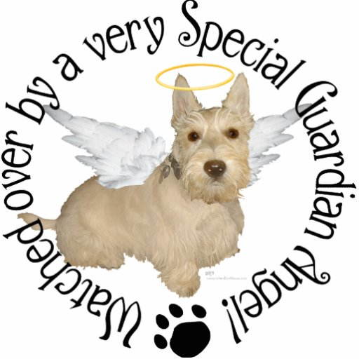 Wheaten Scottish Terrier Angels Photo Cut Outs
