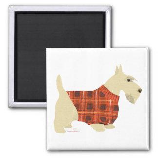 Wheaten Scottish Terrier Sweater Square Magnet