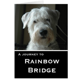 Wheaten Terrier sympathy card