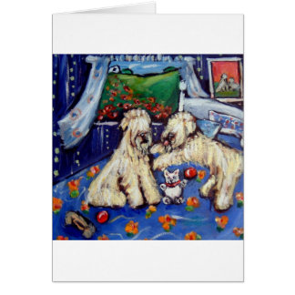 Wheatens on bed with teddy bear card