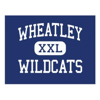 Wheatley Wildcats Middle Roxbury Postcard