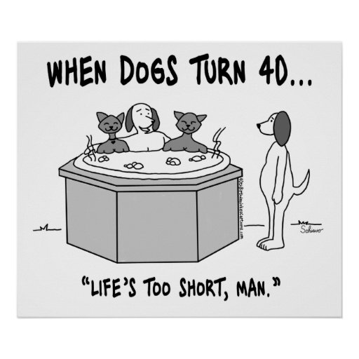 When Dogs Turn 40 Poster