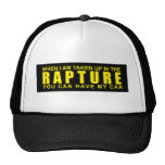 When I Am Taken Up In The Rapture...