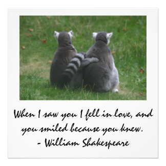 When I saw you I fell in love - Lemur love Photograph