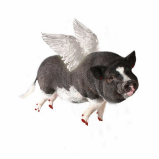 When Pigs Fly Cut Outs