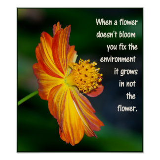 When the flower doesn't bloom... poster