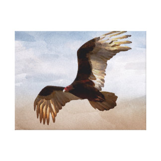 Where Eagles Soar Canvas Print