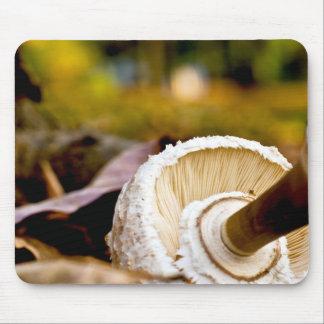 Where is Alice?  Mushroom Still Life Mouse Pad