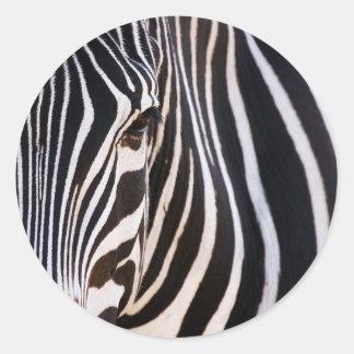 Where Is The Zebra? Round Sticker