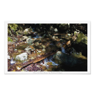 """Where the Water Roams,"" Waterfall Nature Decor Photograph"