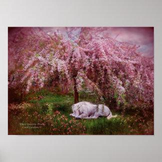Where Unicorn's Dream Art Poster/Print Poster
