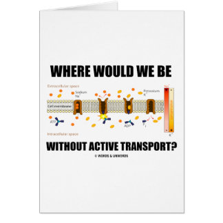 Where Would We Be Without Active Transport? Greeting Card