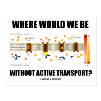 Where Would We Be Without Active Transport? Postcards