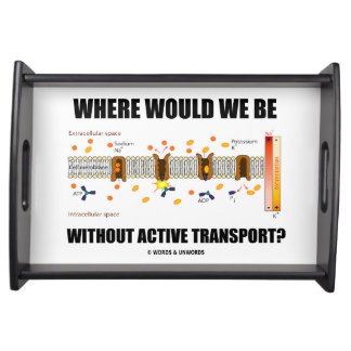 Where Would We Be Without Active Transport? Service Trays