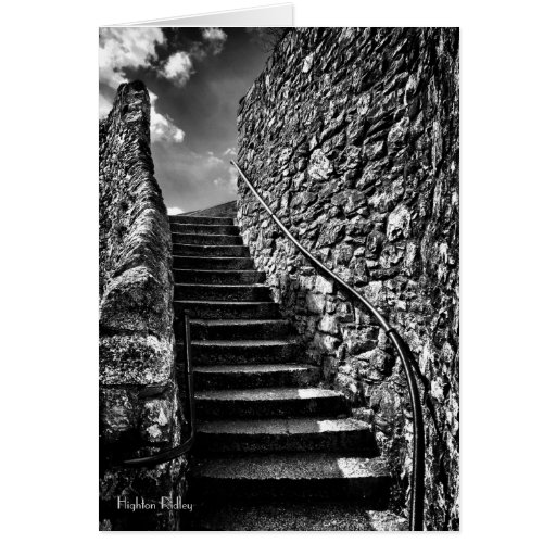 Where Your Steps Lead blank Greeting Card