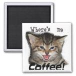 Where's my Coffee Cat
