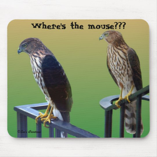 """Where's the mouse???"" Hawks Mouse Mat"