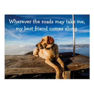 Wherever The Roads Take Me Dog Postcard