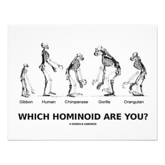 Which Hominoid Are You Hominid Skeletons Custom Announcements