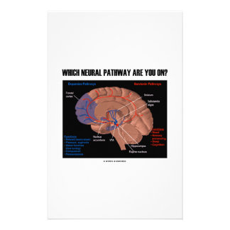 Which Neural Pathway Are You On? Brain Humor Stationery