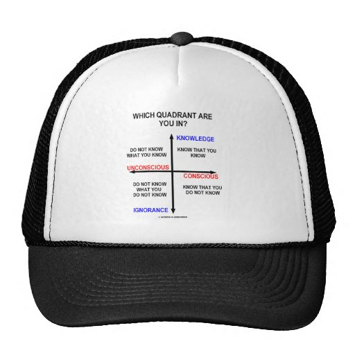 Which Quadrant Are You In? Trucker Hat
