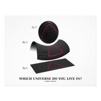 Which Universe Do You Live In? (Physics Humor) Personalized Flyer