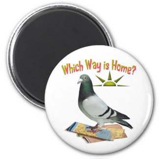 Which Way is Home? Fun Pigeon Art Magnet