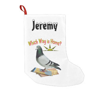 Which Way is Home? Lost Pigeon Christmas Stocking