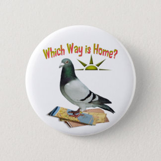 Which Way is Home? Pigeon Art 6 Cm Round Badge