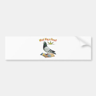 Which Way is Home? Pigeon Art Bumper Sticker