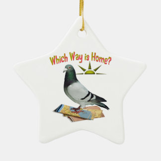 Which Way is Home? Pigeon Art Ceramic Star Decoration