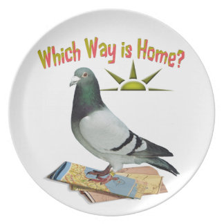 Which Way is Home? Pigeon Art Plate