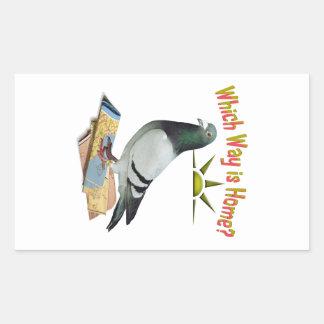 Which Way is Home? Pigeon Art Rectangular Sticker